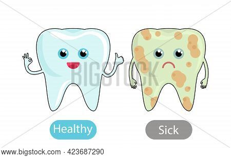 Healthy White Tooth And A Bad Tooth With Caries. The Concept Of Teaching Children The Opposite Adjec