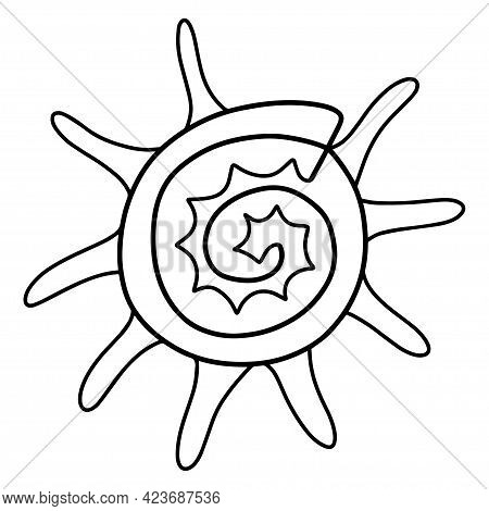 Sunburst Star Turban Shell Linear Vector Illustration. Cartoon Funny Horned Seashell Coloring Page F