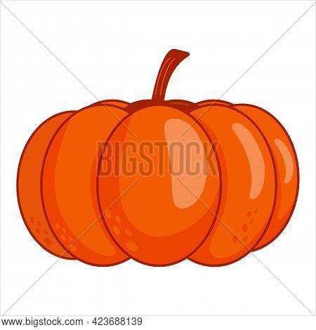 Autumn Pumpkin, Ripe And Juicy. Vegetable Or Healthy Food. Agriculture Symbol. Harvesting Season.