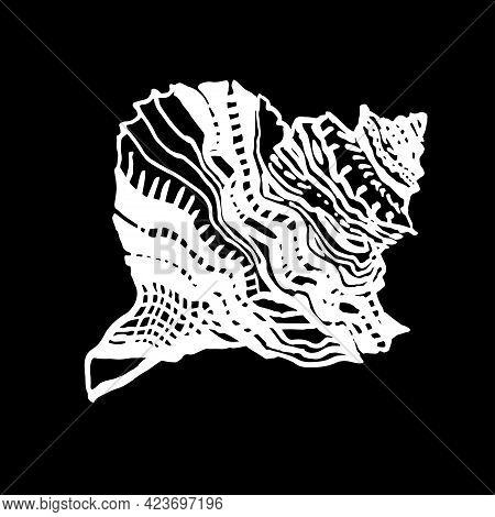 Hand Drawn White Seashell In Wild Line Style Of Ink On Black Background. Doodle Freehand Sketch Desi