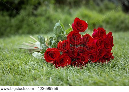 Big Bouquet Of Red Roses On Green Grass. Copy Space.