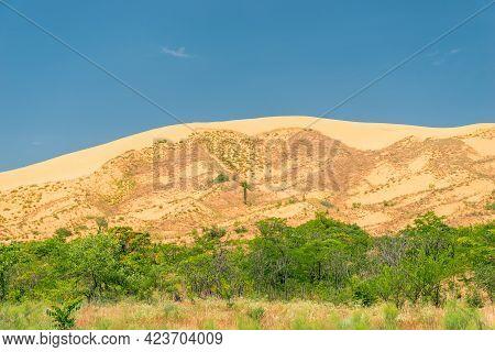 Sand Dune Dune Sarikum In Dagestan, Russia