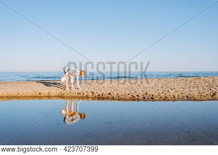 Woman Collect Plastic Garbage On Sandy Beach Of The Sea. Spilled Garbage On The Beach. Environmental