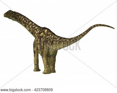 Argentinosaurus Dinosaur Juvenile Tail 3d Illustration - Argentinosaurus Was A Herbivorous Sauropod