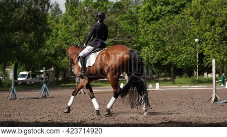 Young Girl Rider On Brown Horse In Equestrian Sport Competition. Horse Riding On The Arena. Dressage