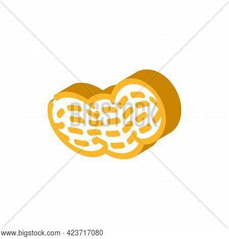 Peanut Nut Isometric Icon Vector. Peanut Nut Sign. Isolated Symbol Illustration
