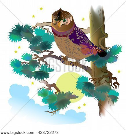 Fantasy Illustration Of Wild Owl, Sitting On The Branch Of Pine Tree. Cover For Children Fairy Tale