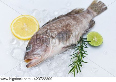 Fresh Raw Seafood Fish For Cooked Food, Grouper Fish On Ice With Rosemary Lemon