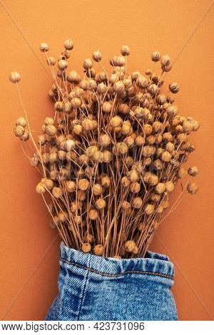 Jeans And Dry Linen On A Bright Brown Background. Natural Denim Fabric Concept. Autumn Fashion Colle