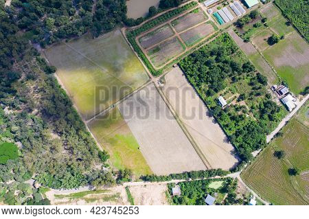 Asia Topview Of The Drone View Around Rice Field Farming In Uthaitani Province, Thailand.