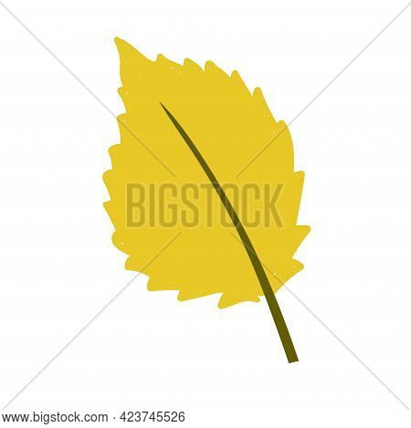 Yellow Birch Leaf Isolated On White Background. Vector Illustration
