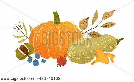 Autumn Vegetable Composition With Pumpkin, Squash, Leaves, Berries, Fruits And Mushrooms. Autumnal S