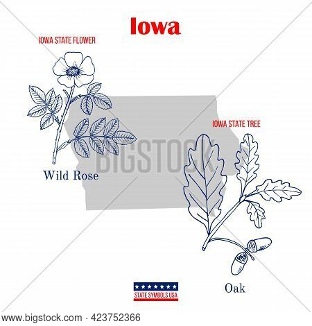 Iowa. Set Of Usa Official State Symbols. Vector Hand Drawn Illustration