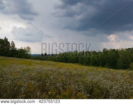 Landscape With Meadow Flowers And Forest With Dramatic Overcast Clouds During Rainy Summer Afternoon