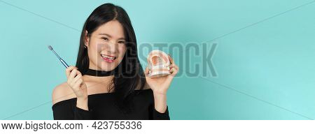Woman Holding Toothbrush And Dental Teeth Model. Oral Health Care Concept.