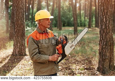 Mature Man Woodcutter Wearing Uniform And Helmet With Chainsaw Is Going To Cut Trees, Posing In Fore