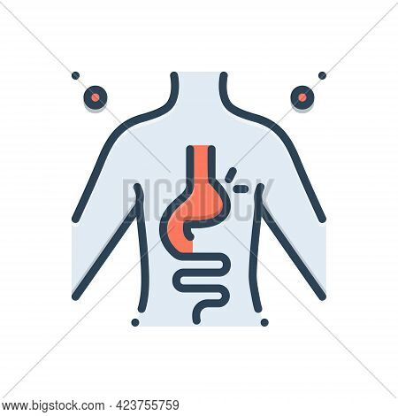Color Illustration Icon For Hernia Inguinal Stomach Diverticulitis Digestive Body