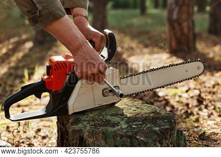 Outdoor Shot Of Unknown Person Worker Fixing Chainsaw Before Or After Deforestation, Logger Fixing T