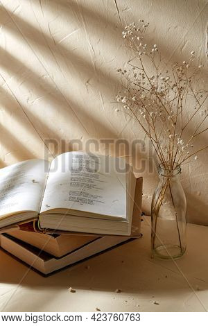 home improvement and decoration concept - still life of books and decorative dried baby's breath flowers in glass bottle over beige background with shadows