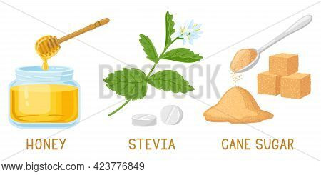 Cartoon Natural Sweeteners. Honey, Stevia Pills And Plants, Brown Cane Sugar Cubes Isolated Vector I