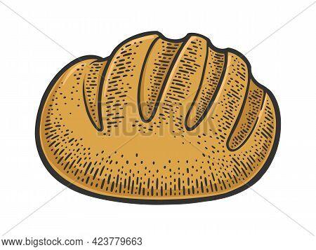 Loaf Of Bread Color Line Art Sketch Engraving Vector Illustration. T-shirt Apparel Print Design. Scr
