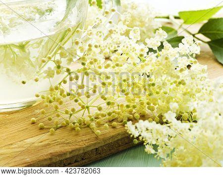 Elderberry Flowers On Wood