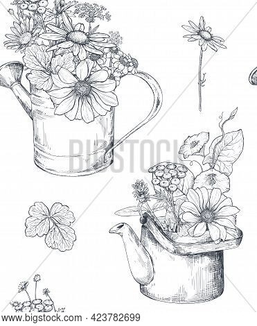 Vector Seamless Pattern With Hand Drawn Bouquets In Watering Cans With Herbs And Wildflowers