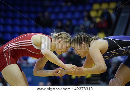 KIEV, UKRAINE - FEBRUARY 16: Match between Maroulis, USA, blue and Hanchar, Belarus during XIX International freestyle wrestling and female wrestling tournament in Kiev, Ukraine on February 16, 2013