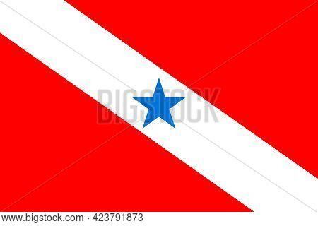 Official Large Flat Flag Of Para Horizontal