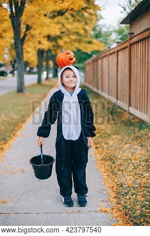 Trick Or Treat. Happy Child Boy With Red Pumpkin On Head. Kid Going To Trick Or Treat On Halloween H