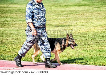 Abakan, Russia - August 21, 2018: A Military Man In Camouflage Patroling With A Sheep Dog.