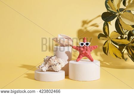 Starfish In Sun Glasses And Shells On The Catwalks Under The Hot Sun. Creative Summer Concept