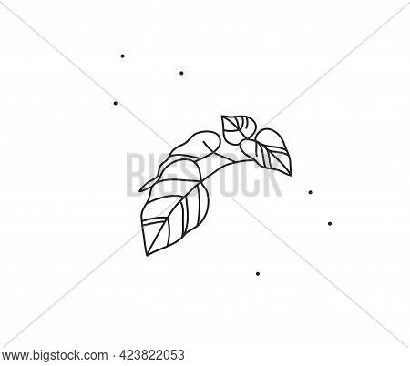 Hand Drawn Vector Abstract Stock Flat Graphic Illustration With Logo Element Of Line Branch Leaves A