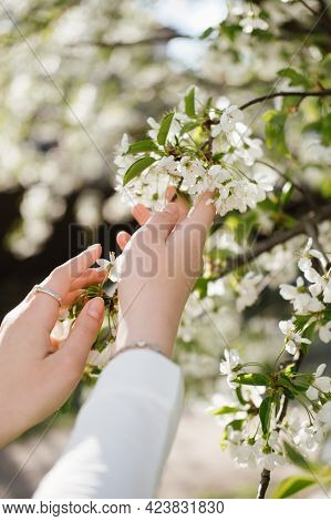 Closeness To Nature, Sensitive Towards Environment. Staying Connected To Nature, Happiness, Reductio