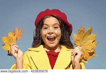 Enjoying The Travel. Child Hold Autumn Leaves. Beauty Of Nature. Happy Retro Girl. Girl Gather Yello