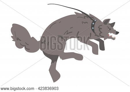 Aggressive Gray Dog On Leash Barking And Baring Its Teeth Vector Illustration