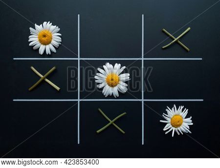 Tic Tac Toe On A Black Background Made Of Chamomile Flowers And Flower Twigs.  Flat Lay.  Natural Co