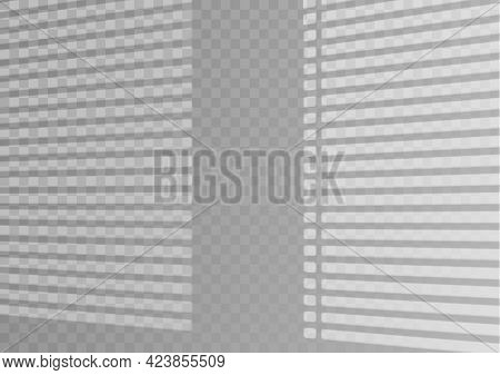 The Transparent Overlay Window And Blinds Shadow.