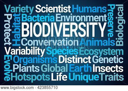 Biodiversity Word Cloud on Blue Background
