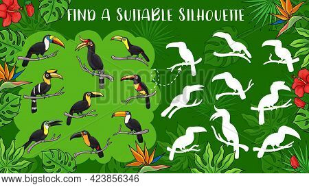 Cartoon Toucan Birds, Vector Kids Game Find Toucan Silhouette. Education Puzzle, Memory Game, Matchi