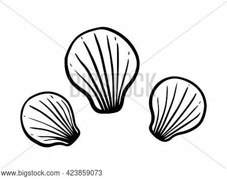 Seashells Isolated On White Background. Vector Hand-drawn Illustration In Doodle Style. Perfect For