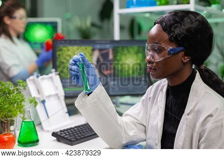 Biologist Woman Holding Test Tube With Genetic Liquid Examining Green Dna Sample For Biochemistry Ex