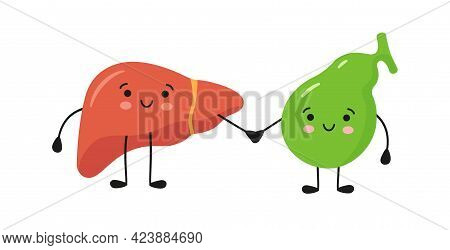 Healthy Happy Smiling Liver And Gallbladder Characters Hold Hands. Symbol Of Liver And Gallbladder H
