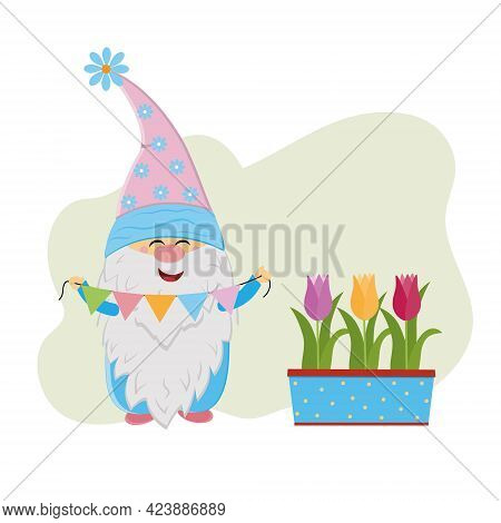 Funny Dwarf With Colorful Garland And Flower Pot With Tulips, Vector Isolated Illustration In Flat S