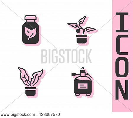 Set Garden Sprayer For Fertilizer, Fertilizer Bottle, Plant In Pot And Icon. Vector