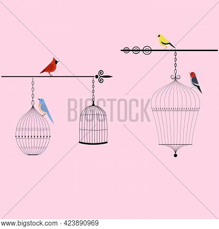 Birds And Birdcages Vector Illustration On Pink Background
