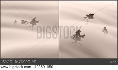 Pine Trees In Mist. Foggy Clouds. Abstract Fog Wave. Natural Landscape