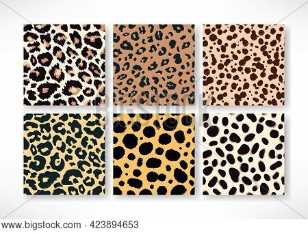 Vector Trendy Leopard Skin Seamless Pattern Set. Hand Drawn Wild Animal Cheetah Spots Abstract Repea