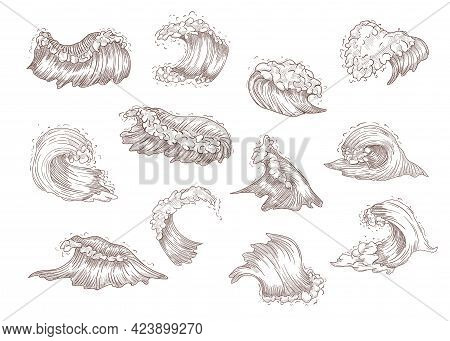 Hand Drawn Vintage Sketch Of Sea Waves. Decorative Drawings Of River Or Ocean Waves, Storm Isolated