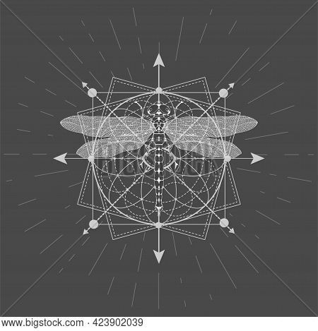 Vector Illustration With Hand Drawn Dragonfly And Sacred Geometric Symbol On Black Background. Abstr